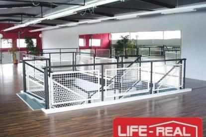 moderne Geschäftsfläche mit Galerie und ausreichend Parkplätzen