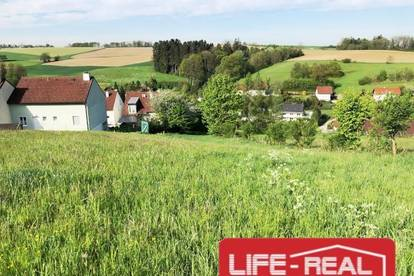 schöne, große landwirtschaftliche Nutzfläche in der Gemeinde Wilhering