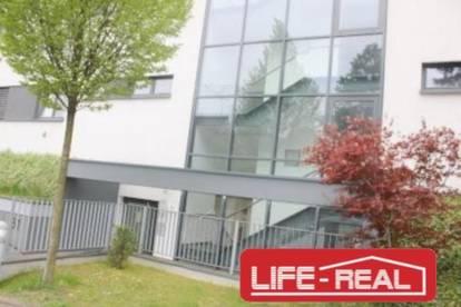 Froschberg - Moderne und sonnige 3-Zimmerwohnung in exklusiver Lage