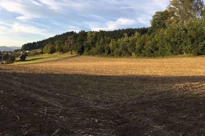 Grundstücke am Sonnenhang von Klein St. Veit