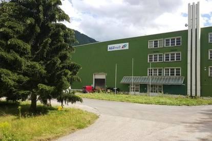 Produktions oder Lagerhalle mit Bürotrakt