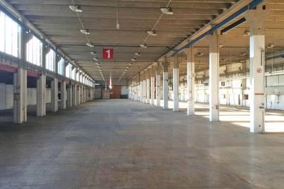 Lagerflächen oder Produktionsflächen