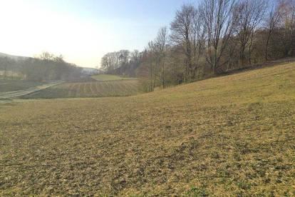 Landwirtschaftl. Nutzfläche, Wald