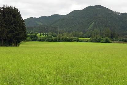Ebener Wiesengrund mit Bauerwartungsland