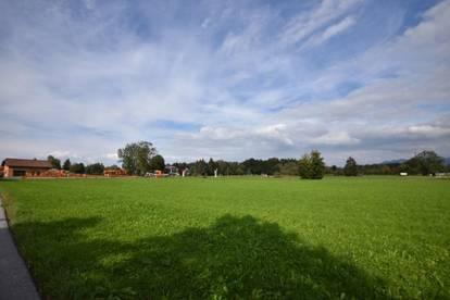 Gelegenheit - Industriegrundstück 10.000 m² zur Pacht/Baurecht!