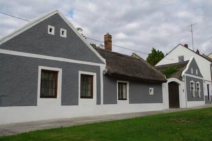 Bauernhof Ensemble im Seewinkel/Neusiedlersee