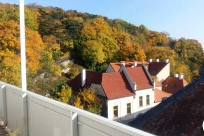 Citywohnung mit Blick über die Dächer Badens