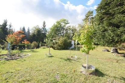 8061 St. Radegund: Traumhafter Baugrund im Grünen