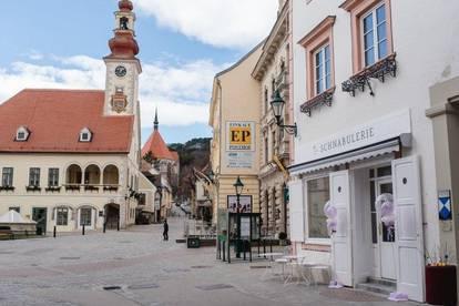 Entzückendes Geschäftslokal in Top Lage - Mödlinger Altstadt