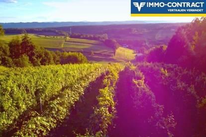 Buschenschank und Weinberge mit extra Stüberl - Und riesiger Terrasse im Grünen - Traumlage mit herrlicher Aussicht