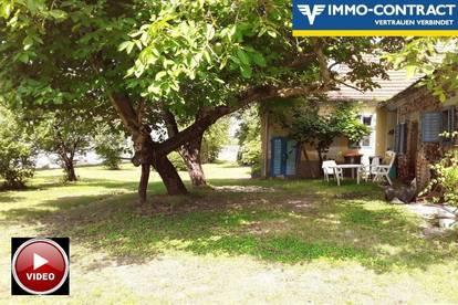Klassischer Hof - Uneinsehbarer idyllischer Innenhof - Ruhelage am Dorfrand