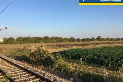 Landwirtschaftliches Grünland