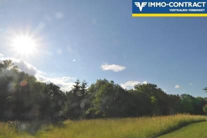 Idyllisches Grundstück auf schöner Anhöhe, im sonnigen Südburgenland - Ruhelage!