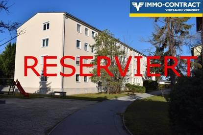 RESERVIERT.Helle 2-3Zi. Wohnung mit Fernblick in Bruck zu vermieten (2 halbe MM gratis)