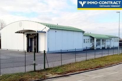 Halle mit 4 Kühlhäusern, 6 Pferdeboxen, Arbeits- und Büroräumen. Teilvermietung möglich!