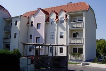 Wohnung in Eltendorf - NEUE PREISE