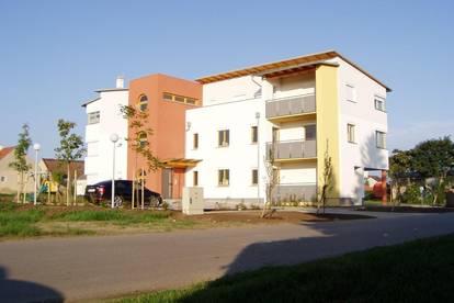 Wohnung in Tadten