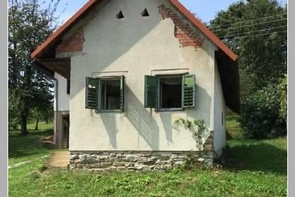 Kleines Kellerhaus mit 1.500 m² Wein- u. Obstgarten im Süd-Burgenland - 1769