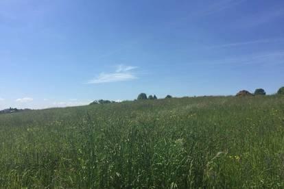 sonniges Grundstück im Blumendorf Fernitz-Mellach