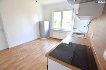 NEUWERTIG!!! Stilvolle Zwei-Zimmer-Wohnung nach liebevoller Sanierung!