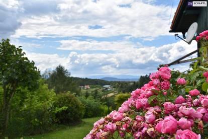 TRAUMHAFT! Wohnen wie ein Kaiser - Hier liegt Ihnen Graz zu Füßen! Ideal für Familien + Riesenterrasse inkl. Pool im Garten!