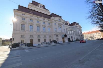 Altbauschmuckstück in bester Stadtlage (Universitätsnähe, Opernnähe)