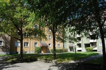 Familienfreundliches Wohnen im begehrten Stadteil Oed - sofort beziehbar!