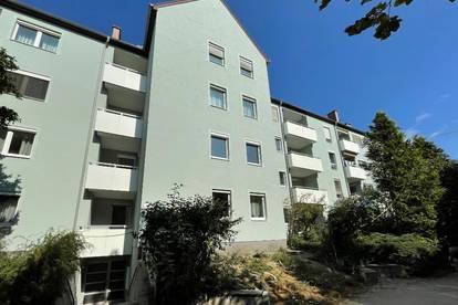Bindermichl Oed: Urban und grün wohnen mit hohem Wohlfühlfaktor - frisch sanierte attraktive Wohnung mit Balkon - provisionsfrei und sofort beziehbar!