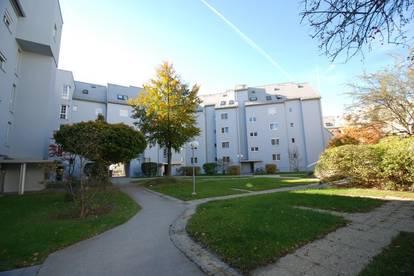 Wohlfühlen auf höchstem Niveau (neue DG-Loft-Wohnung) mit XL-Ausblick-Balkon im Stadtteil Bindermichl/Oed - ausgewählte Nachbarschaft inkl.!