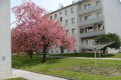 ideale Familienwohnung im  1. OG mit großem Balkon, sanierte Siedlung mit Aufzug