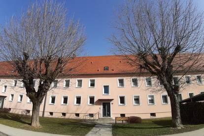 Gemütliche, sanierte 3 Raum Wohnung mit sehr großer Wohnküche im schönen Stadtteil Steyr Münichholz