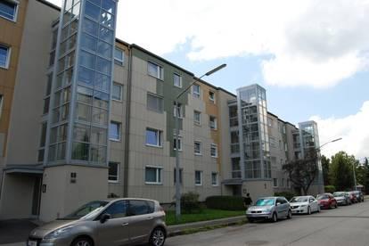 Traumhafte Wohlfühloase im beliebten Stadtteil Linz/Oed mit sehr guter Anbindung in das Zentrum! Provisionsfrei!