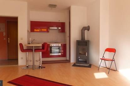 2-Zimmer-Wohnung mit See- u. Bergblick