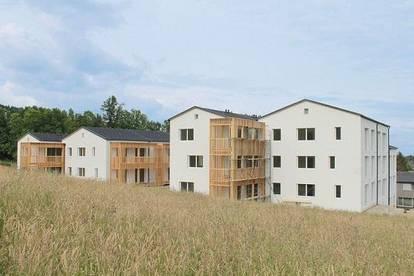 PROVISIONSFREI - St. Radegund - ÖWG Wohnbau - geförderte Miete mit Kaufoption - 2 Zimmer