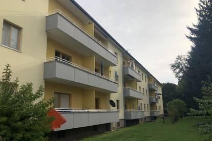 PROVISIONSFREI - Wagna - ÖWG Wohnbau - Miete - 1 Zimmer