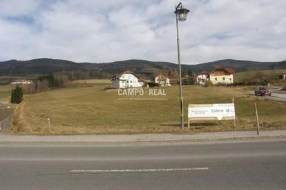 CAMPO-GRUND: Schöne Baugründe im Yspertal - südl. Waldviertel
