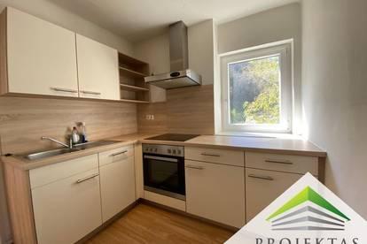 Nette 2 Zimmerwohnung mit Küche und Donaublick