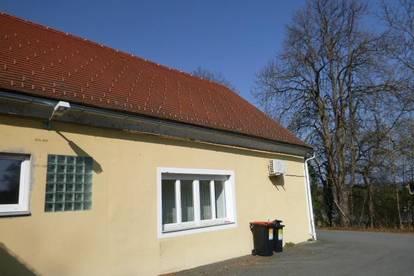 Ärztezentrum zur langfristigen Miete, Mitspracherecht bei der Planung, situiert im Zentrum der histor. Stadt Güssing