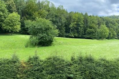 Salzburg-Aigen: Exklusiver Baugrund, ca. 1.000 qm, sonnig, ruhig, Bauplatz erklärt, in idyllischer Grünlage