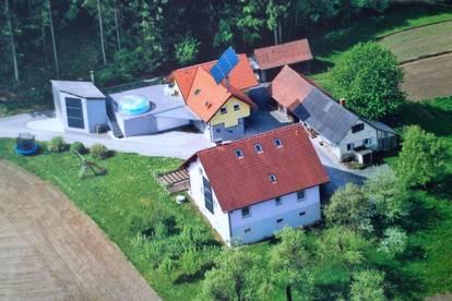 ANWESEN MIT ZWEI NIEDRIGENERGIE HÄUSER AUCH ZUR LANDWIRTSCHAFTLICHEN NUTZUNG - 2,7 ha