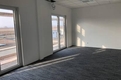 Büroräumlichkeiten ca. 80m² mit Shared Spaces