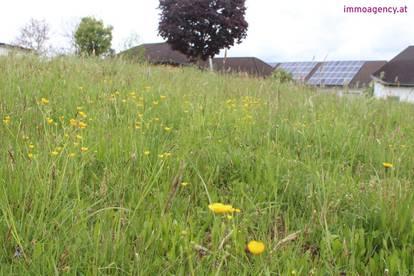 Großer Baugrund in Geiseldorf