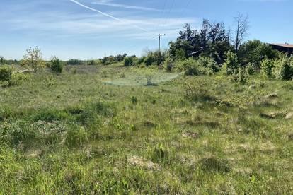Baugrundstück in Gänserndorf Süd - Rarität 40 % Bebaubarkeit