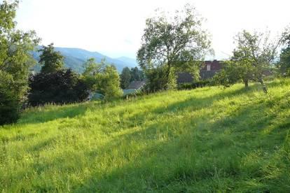 Traumplatz - wunderschönes Grundstück inmitten von Turnau