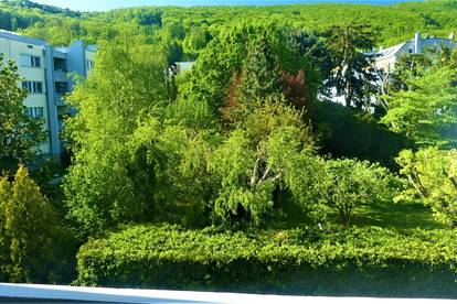 Geräumige Loggia-Wohnung mit Grünblick
