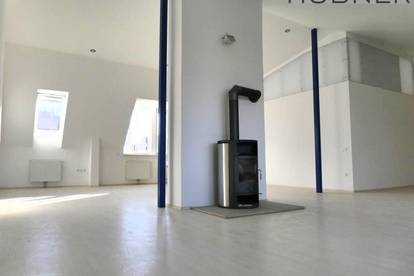 DG-Loft-Wohnung mit 27m² Terrasse und grandiosem Weitblick