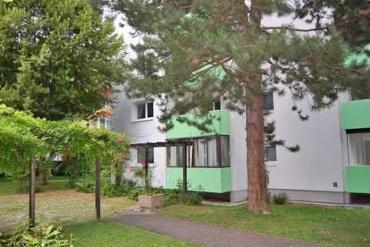 Ansehnliche 3-Zi.-Wohnung in ruhiger Grünlage
