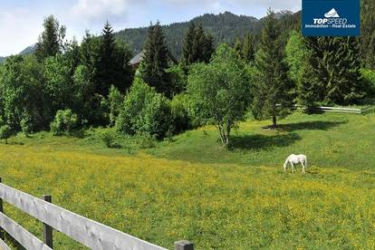 Baugründe Donnersbachwald - Schiregion Riesneralm