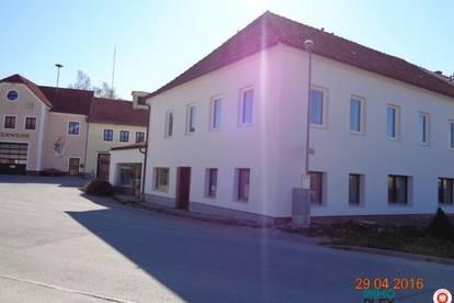 3910 Oberstrahlbach; Helle, sonnige 4 Zimmer Mietwohnung - 96m2 Wfl. - mit Gartenbenutzung zu mieten!