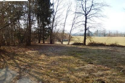 Velden: Ruhiges, sonniges Grundstück mit Altbaumbestand (3108)